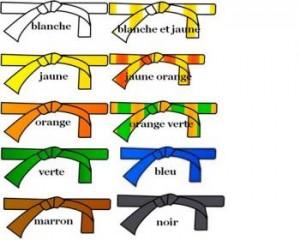 ceintures de couleur judo
