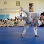 Judo_démo