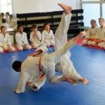 Judo_démo 5