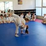 Judo_démo 7