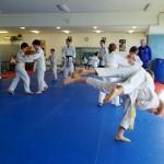 Judo_démo-dojo