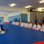 Judo_démo-dojo 2